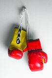 Red leather boxing gloves  , Boxing gloves background, popular sport for fighter Stock Images