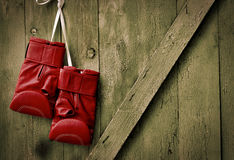 Red leather boxing gloves hang on a nail in the wooden  wall Royalty Free Stock Photo