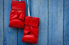 Red leather boxing gloves hanging on a rope Royalty Free Stock Image