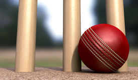 Cricket Ball At Base Of Wickets Stock Image