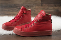 Red leather sneakers on a white carpet and wood flooring Stock Image
