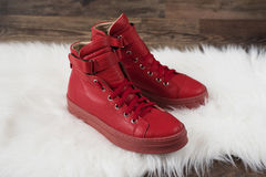 Red leather sneakers on a white carpet and wood flooring Royalty Free Stock Photos