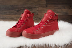 Red leather sneakers, white carpet and wood flooring Stock Photo