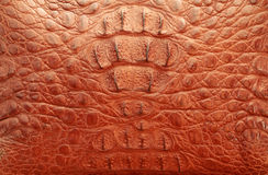 Red leather texture Royalty Free Stock Images