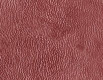 Red leather texture. Stock Images
