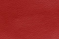 Red leather texture background, skin texture background. Red leather texture background, skin texture background Royalty Free Stock Photos