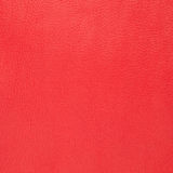Red leather Royalty Free Stock Photography
