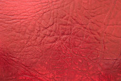 Red Leather (Texture) Royalty Free Stock Images