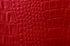 Red leather texture print as background Stock Photo