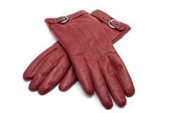 Red leather woman gloves Stock Image