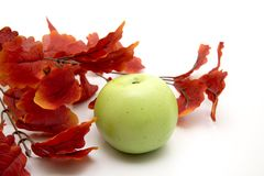 Red leaves and apple Stock Photo