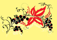 Red leaves and black fruits Royalty Free Stock Images