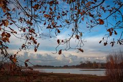Autumn. Red leaves in Nederweert, Netherlands Royalty Free Stock Photography