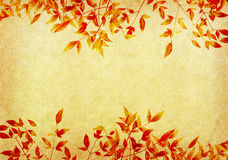 Red leaves tree with old grunge antique paper Stock Images