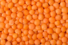 Red lentil Stock Photos