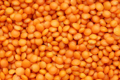 Red Lentil Royalty Free Stock Photo
