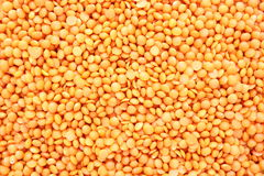 Red lentil texture Royalty Free Stock Photos