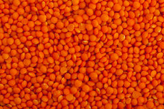 Red lentils Royalty Free Stock Image