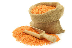 Red lentils in a burlap bag Stock Images