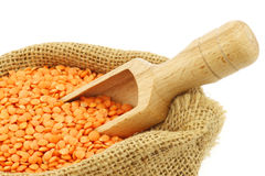 Red lentils in a burlap bag Stock Image