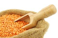Red lentils in a burlap bag Stock Image