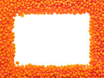 Red lentils - frame. Royalty Free Stock Photography