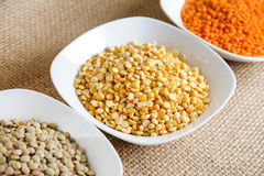 Red lentils, yellow lentils and green dried lentils Stock Images