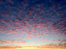 Red leopard sky. Sunrise lighting up the sky with red clouds Royalty Free Stock Photography