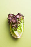 Red lettuce Stock Photo