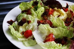 Red lettuce salad in white bowl on dark table, high angle view stock image