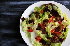 Red lettuce salad in white bowl on dark table, top view stock image