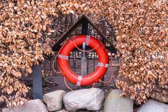 A red life bouy set against a bush of brown leaves in a small wo stock image