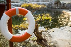 Life buoy in the water. Red life buoy for safety of swimmers on the deck Stock Photos
