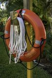 Red Lifebuoy hanging on a pillar. In foliage Royalty Free Stock Image