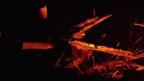 A red light from the bonfire reflecting on the wood in the forest