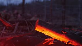 A red light from the bonfire reflecting on the wood in the forest - soldiers behind an iron wire on the background