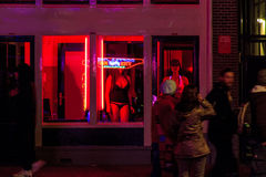Red Light District Windows at Amsterdam Stock Photography