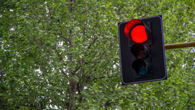 Red light. Stop signal for all vehicles in the city Royalty Free Stock Image