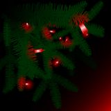 Red lights in green pine boughs Royalty Free Stock Photography