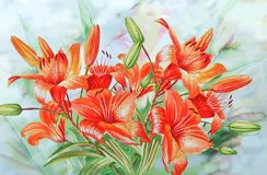 Red Lilies Stock Image