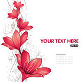 Red lilies design. Vector illustration, eps-10 Royalty Free Stock Photography