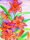 Red daily lilies Stock Photos