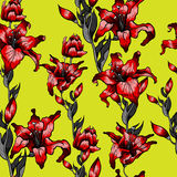 Red lilies pattern seamless. Summer  autumn flowers textile collection. Summer  autumn flowers textile collection Stock Photo