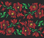 Red lilly pattern illustration. Decorative red lilly pattern design Royalty Free Stock Image