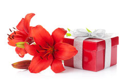 Red lily flower and gift box Stock Photos
