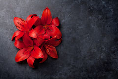 Red lily flowers. On dark stone background with space for your greetings. Top view Stock Images