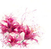 Red Lily Flowers watercolor Stock Photography