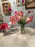 Red Lily& x27;s table center piece Royalty Free Stock Photos