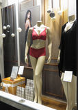 Red lingerie set on display in a store front window Stock Image