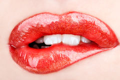 Red lips. Biting her red lips teeth Royalty Free Stock Photo